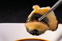 Thịt ốc sushi - Topshell sushi